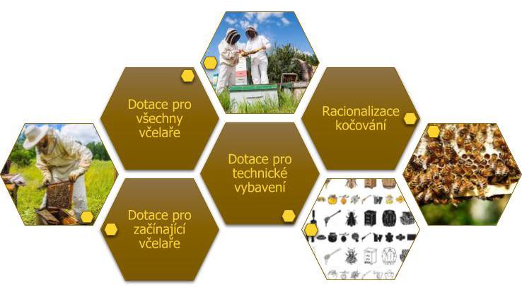 Dotace pro české včelaře